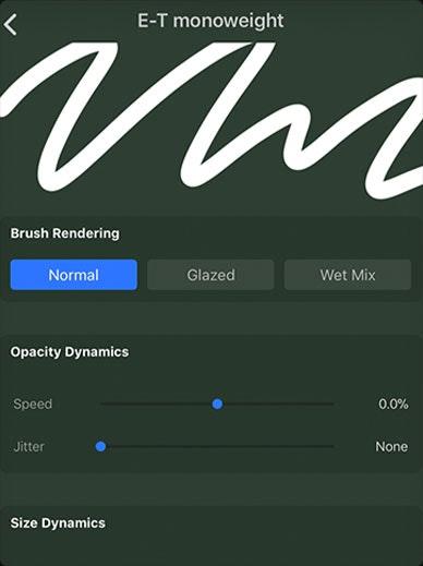 Custom Procreate Monoweight Brush