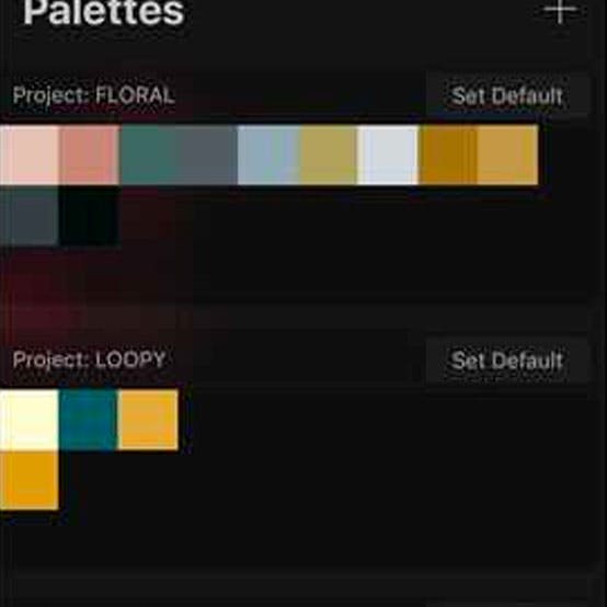 Bonus Item for Every project's color palette as a download}