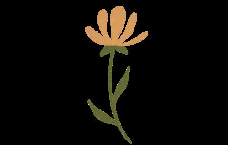 Basic Leaves + Petals