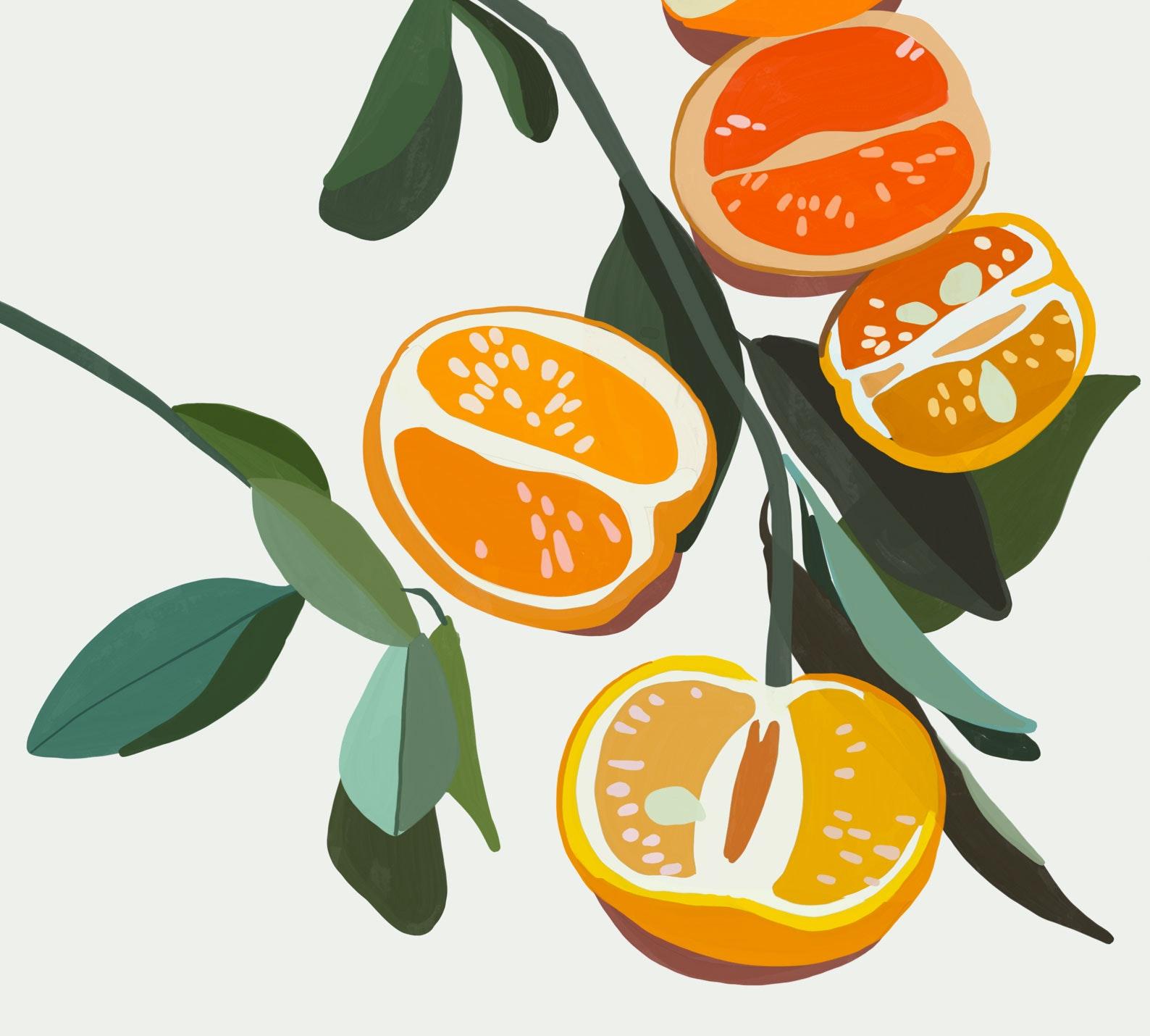 Gouache Oranges painted in Procreate